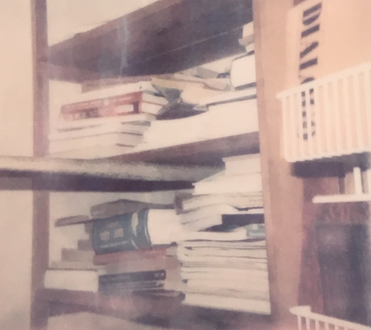 polaroid of bookshelves