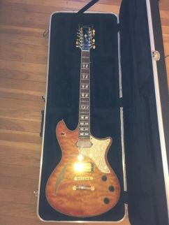 schecter whol