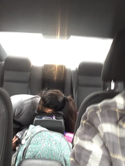 Asleep on a Roadtrip