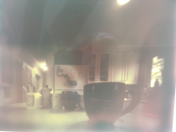 PInhole Polaroid, Detail, april 5, 2017.jpg